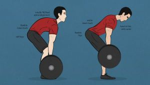 deadlift_right_and_wrong